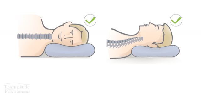 spine-pillow.jpg